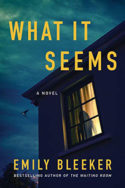What It Seems by Emily Bleeker
